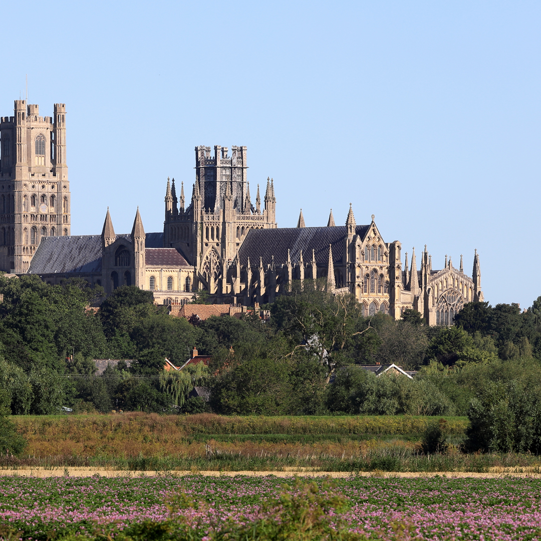 The famous Ely Cathedrel with its iconic, predominantly wooden, octagonal tower.